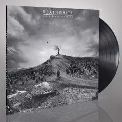 "Death Angel ""The bay calls..."