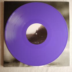 """Gwlt """"Stein & eisen"""" vinyl"""